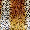 bezug_leopard