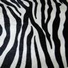 bezug_zebra